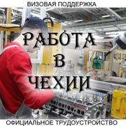 Официальное трудоустройство в Чехии